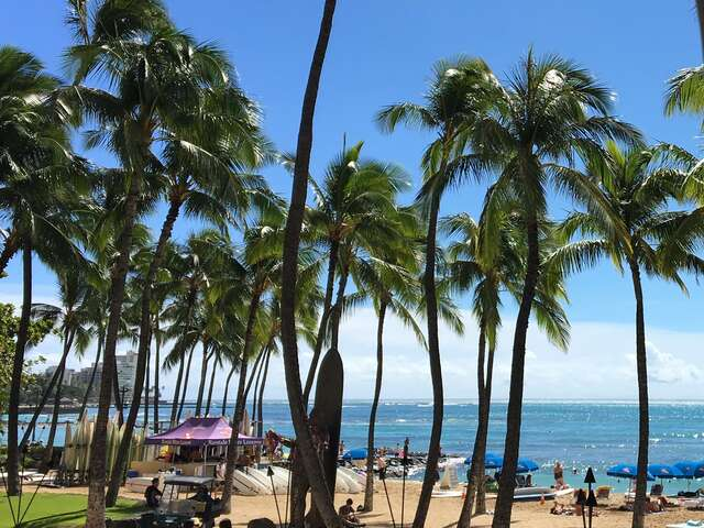 Two different types of trips to Honolulu, Oahu — Zuzana & Manya
