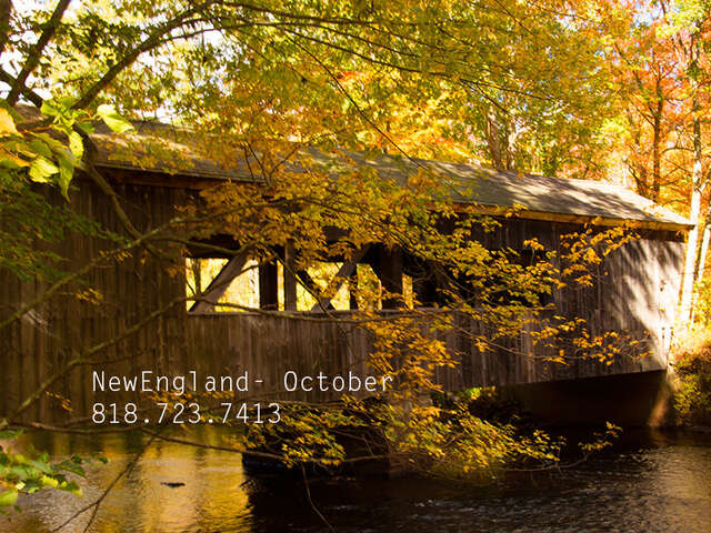 Fall Foliage in New England-October 2020