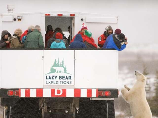 Exclusive! Experience the northern frontier town of Churchill and the wonderful wildlife surrounding it on a 2 night, 3 days – Polar Bear Adventure!