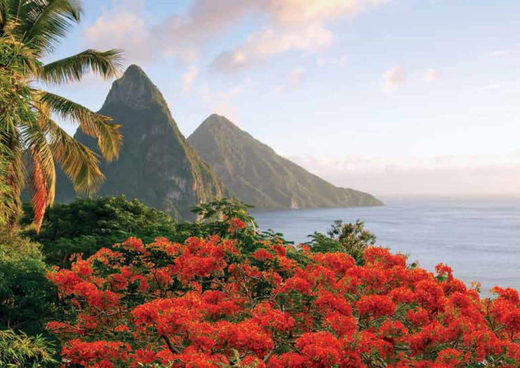 Get Free Perks Sailing the Caribbean with Oceania's O Life Choice