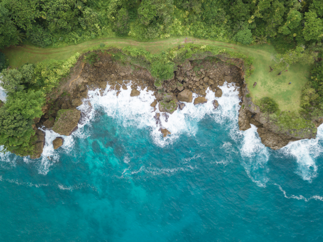 Finding Wellness in the Waters of Jamaica
