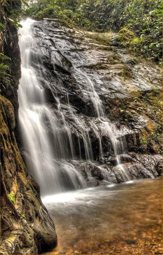 Mashpi Rainforest Warefalls