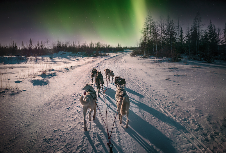 5 FAQ's About Travel in the Arctic