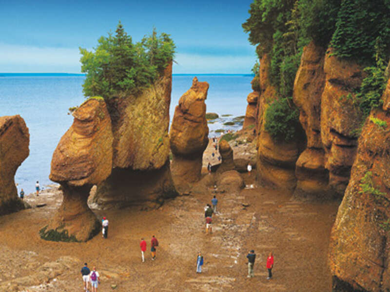 Walk on the bottom of the Sea at the Bay of Fundy
