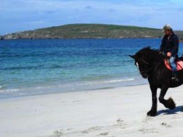 Authentic Irish experiences -  immersed in the 'Craic'!