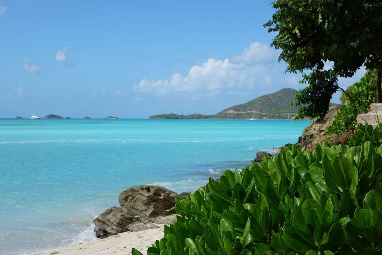 Oceania Cruises: Amazing Amazon