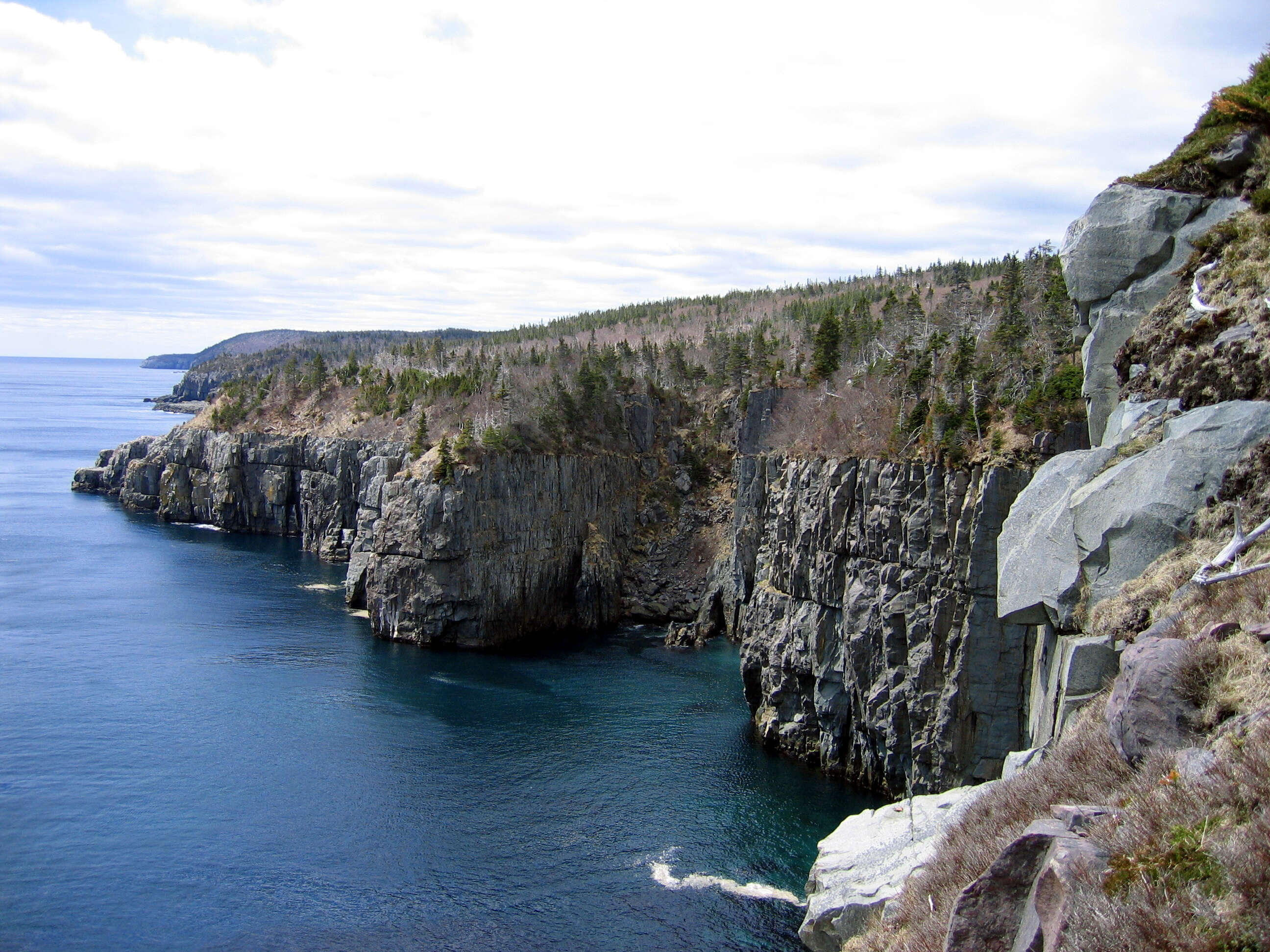 A New Reason To Visit Newfoundland - Mistaken Point Recently Designated An UNESCO World Heritage Site