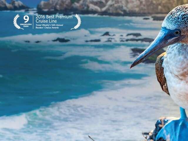 Galapagos Island with Celebrity  Cruises