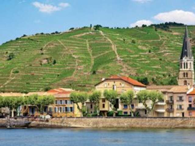 Wine and Dine with AMA Waterways
