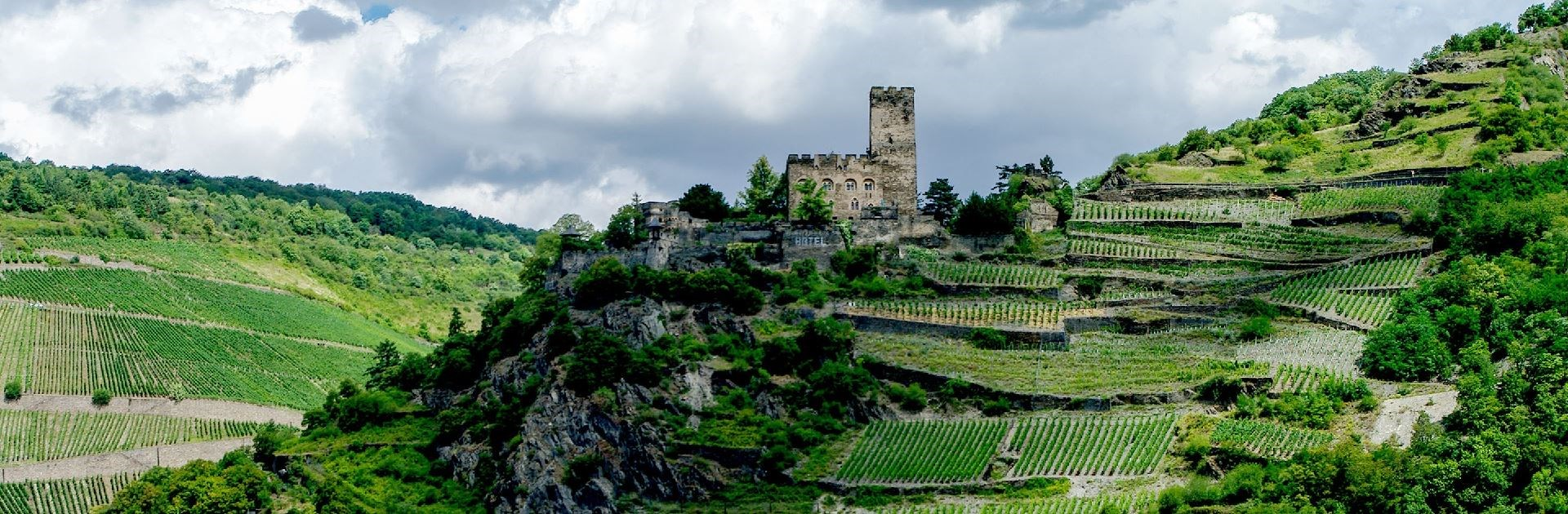 Captivating Rhine-Special Departure with a pre-cruise trip to the Slow Food Cheese Festival in Bra, Italy led by James Ayers.