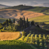 14 Days - A Taste of Tuscany - Sold Out