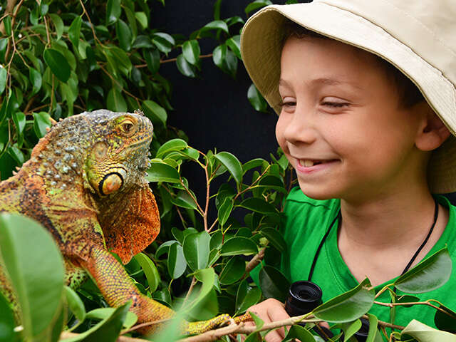 Top 5 Places to Experience Wildlife with Kids