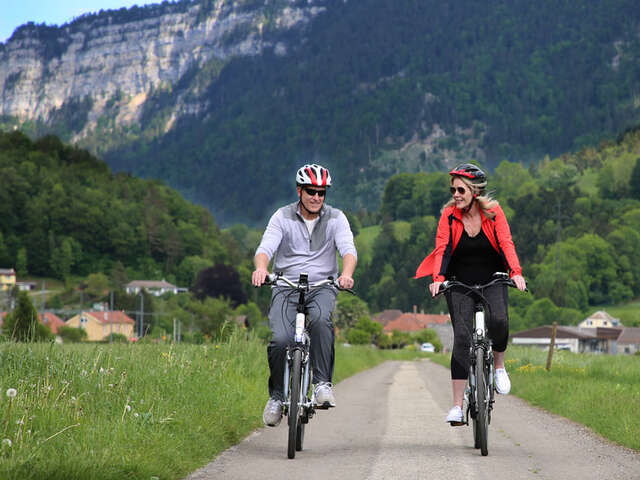 Collette  - Save $450 on a small group tour to Switzerland!