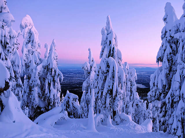 Our Top 3 Canadian Winter Experiences