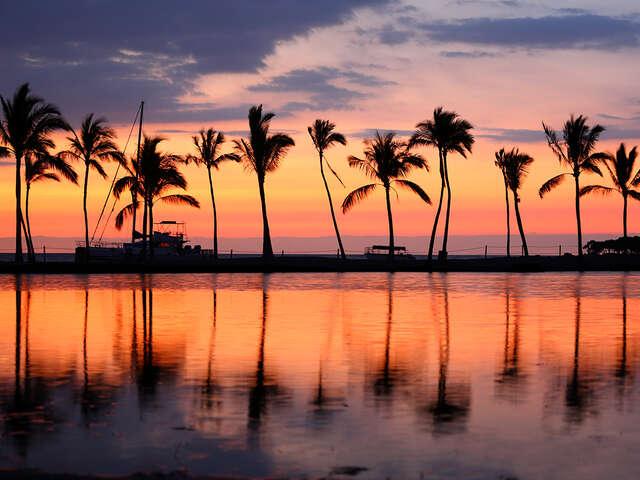 banner_hawaii.jpg
