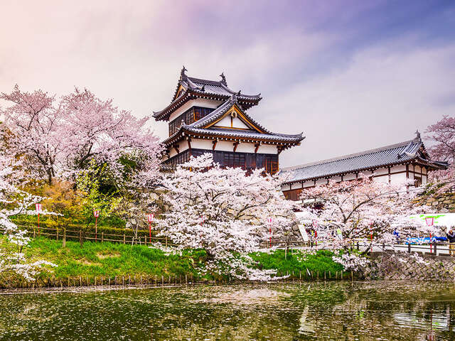 Pleasant Holidays - EXCLUSIVE JAPAN & ASIA Up to $150 OFF per booking!