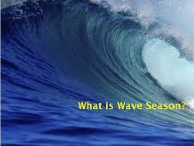 WAVE SEASON IS NOW !!
