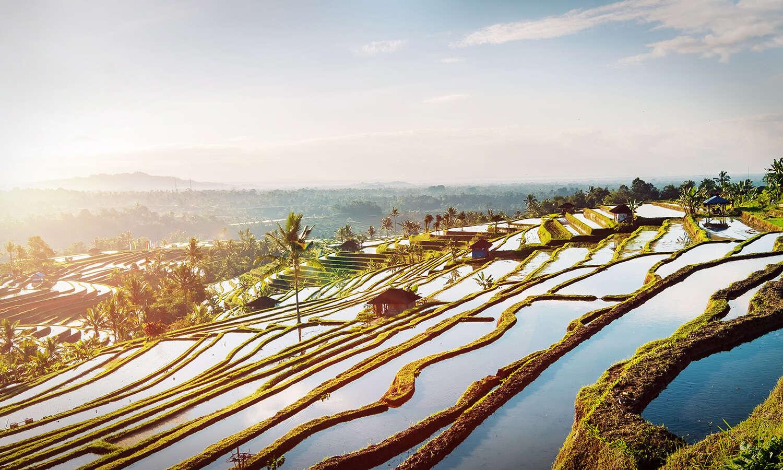 Bali Yoga & Spiritual Encounter