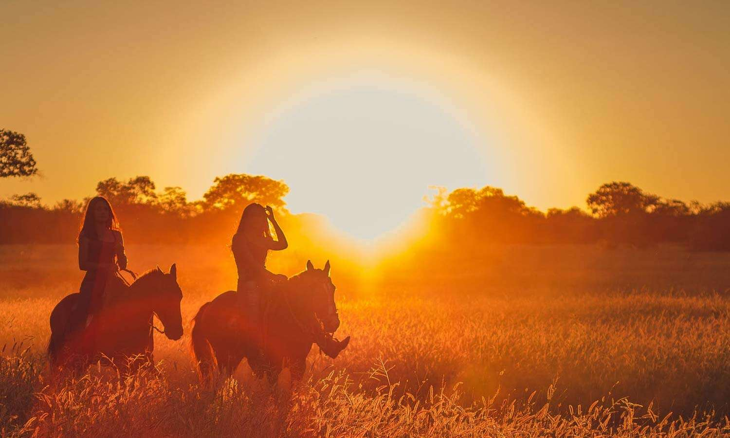 Where to go for an Authentic Texas Cowboy Experience