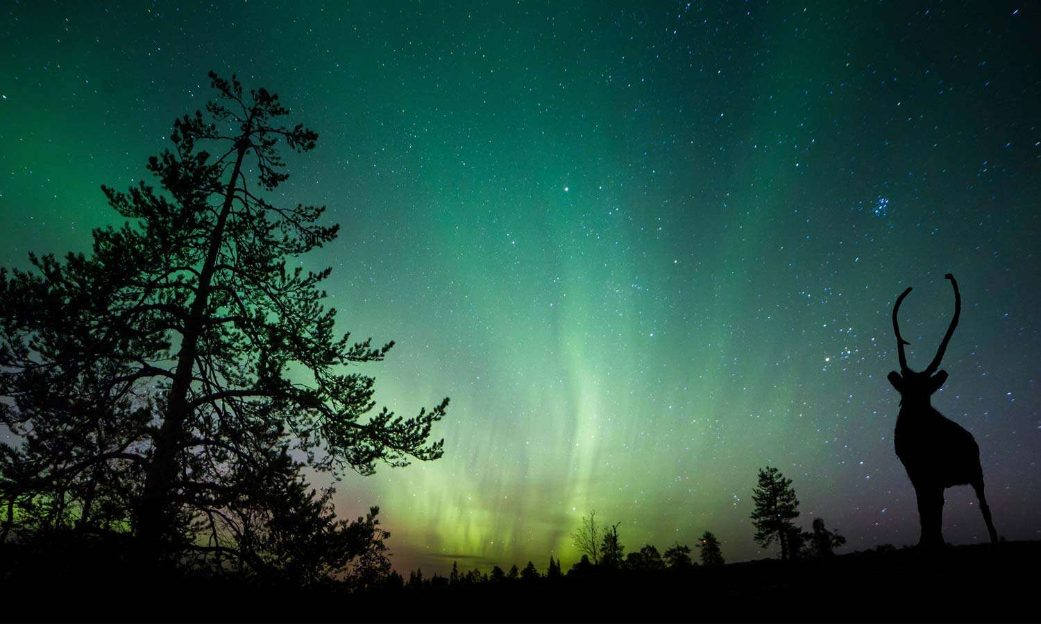 The Best Places in Canada to See the Northern Lights
