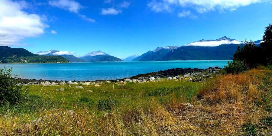 Art in the Wilderness - Haines, Alaska