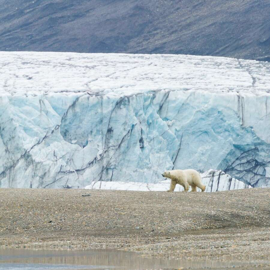 Beauty and history in one - Bellsund, Svalbard