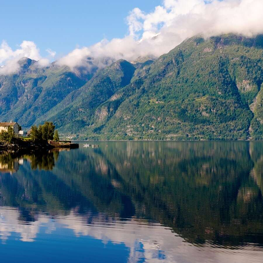 Orchard-lined fjord - Rosendal or Sunndal, Norway