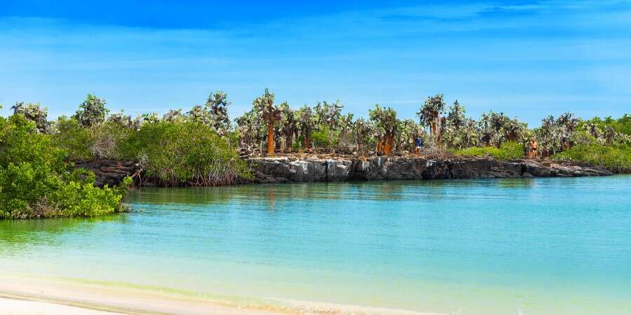 The Galápagos Islands - Quito/Baltra Island/Santa Cruz Island