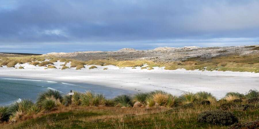 Pubs, Penguins and Perfect Wilderness - Falkland Islands