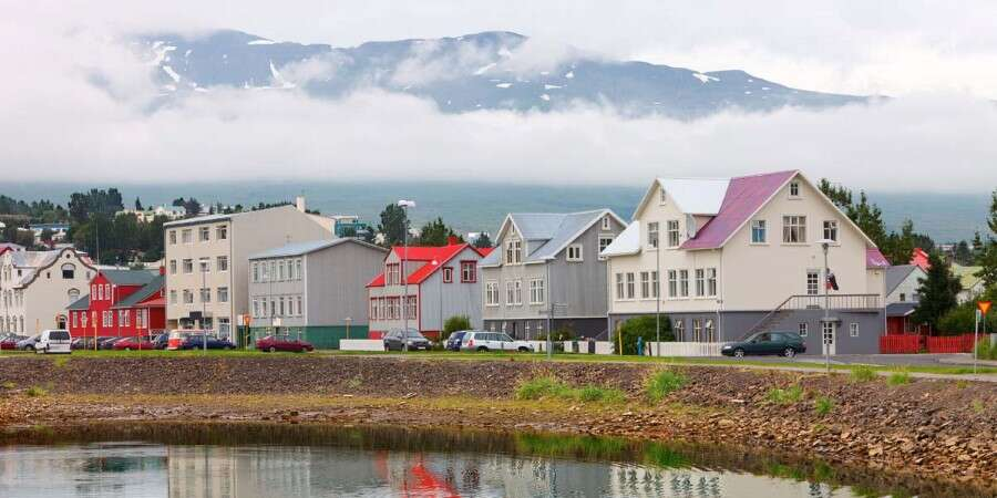 Fjords, Birds and City Life - Hrísey and Akureyri