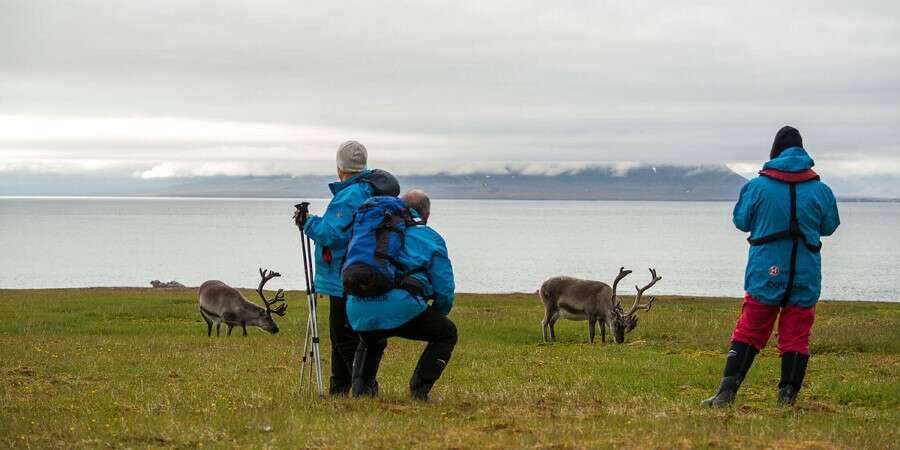 Enjoy Life in Arctic Surroundings - The Fjords of South-West Spitsbergen