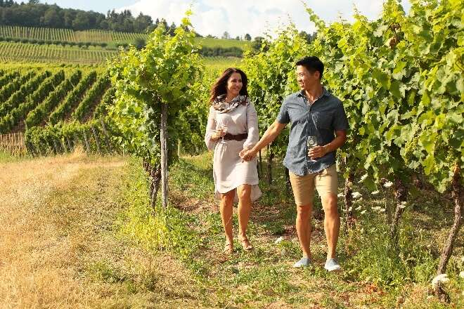 Save Exploring the Wine Regions of Europe on an AmaWaterways River Cruise; New 2020 and 2021 Wine Itineraries