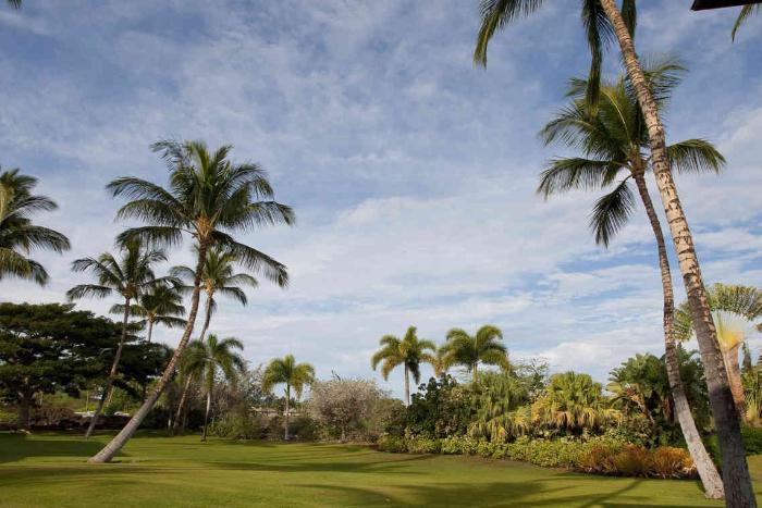 The Islands at Mauna Lani 4 star, Hawaii grounds