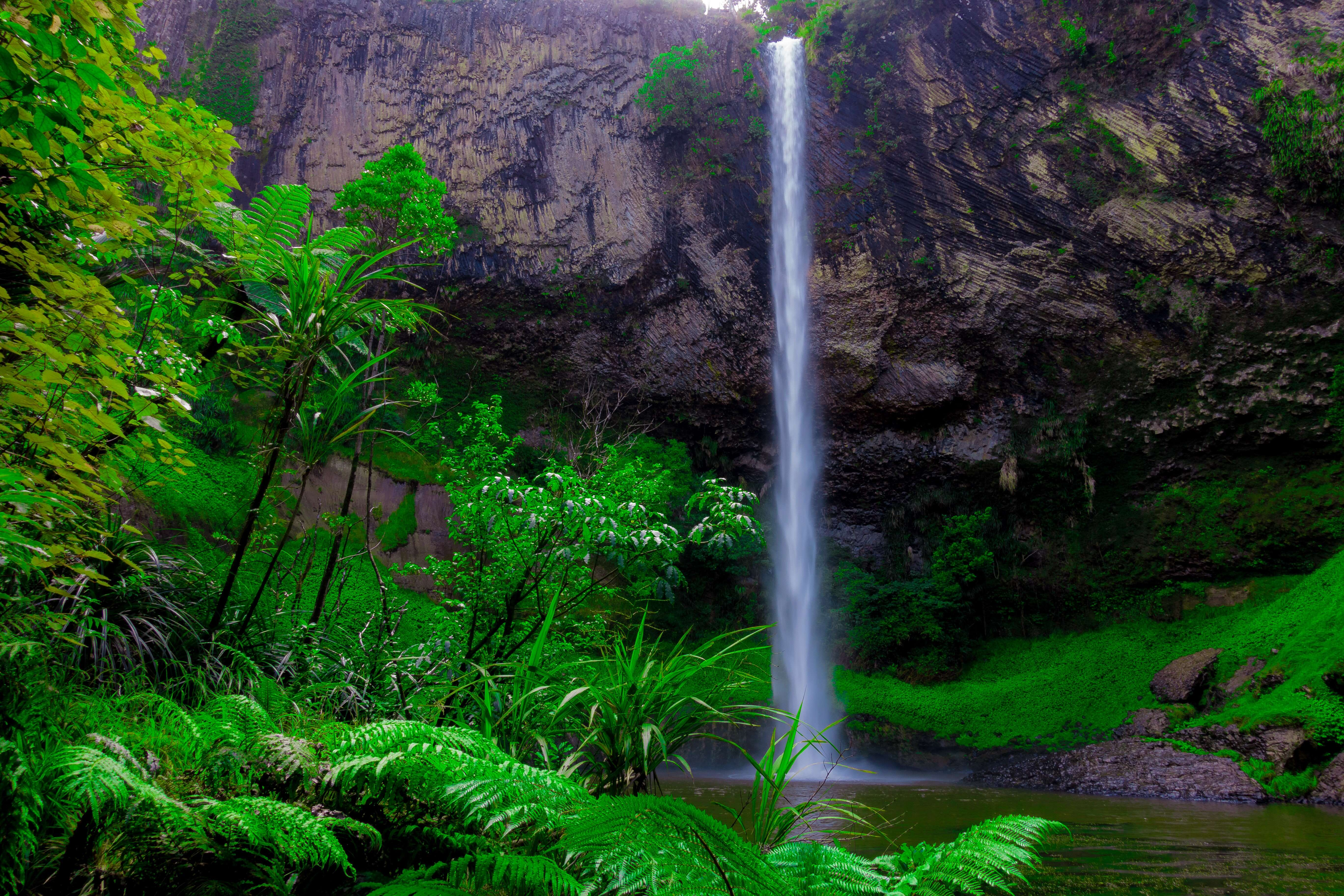 New Zealand Encompassed