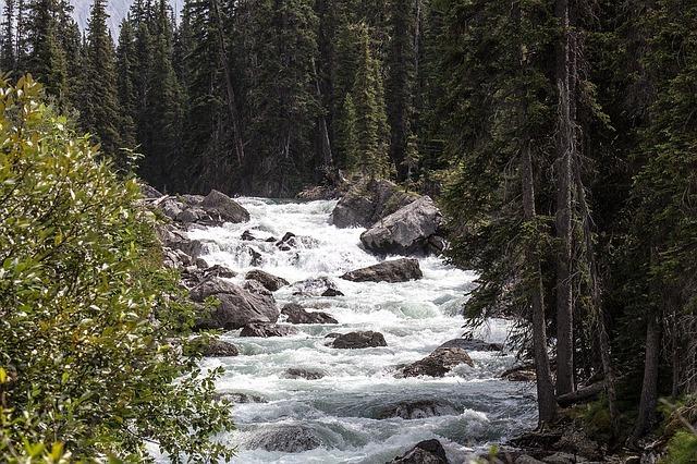 Listen to the gently rolling rapids of Maligne River in Jasper.