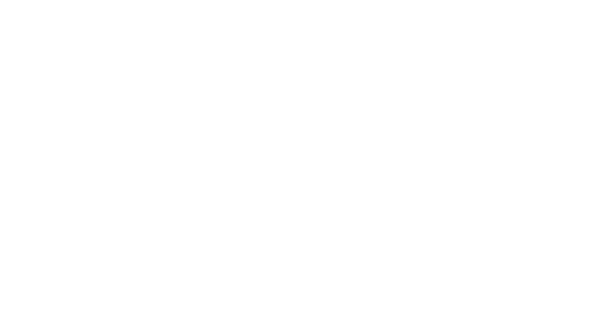 Tribes Experiences