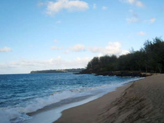 Cruising Hawaii's Paradise with Sheraton Waikiki