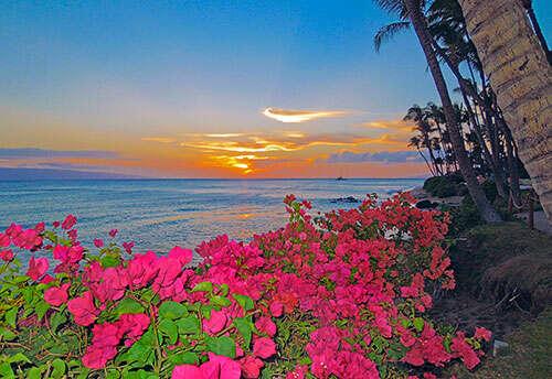 Hawaii by Land & Sea