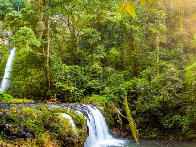 East Coast Islands and Rainforest Summer 2019