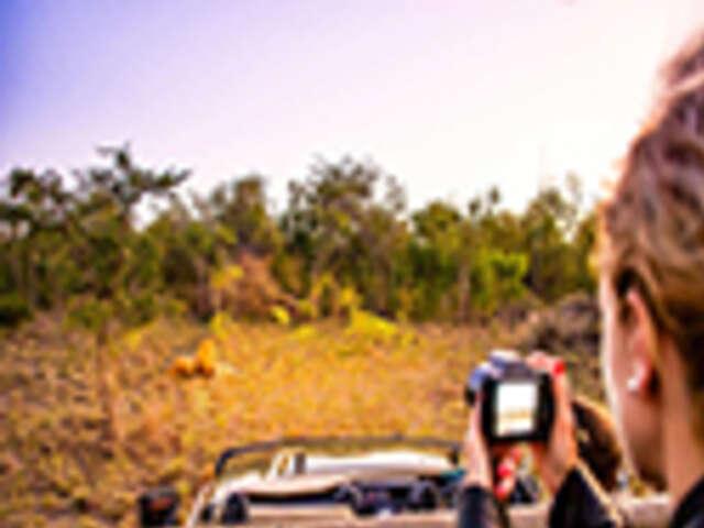 Cape, Safari & Falls