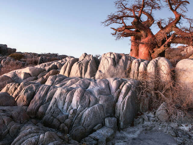 Kruger, Victoria Falls & Botswana Safari