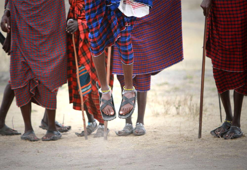 The Plains of Africa Kenya Wildlife Safari